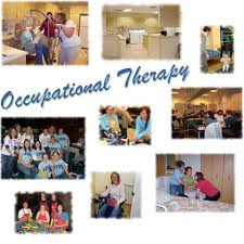 Occupational therapy admissions essay